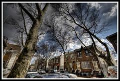 HDR: Boro Park neighborhood in HDR (Chiubacca.) Tags: nyc brooklyn sigma explore 1020mm hdr chiu d40 bnz506 chiubacca