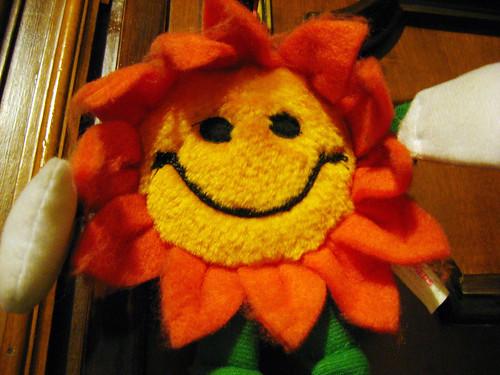 sunny door companion