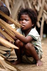 National Park Orang Asli - by wazari