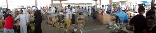 Isa Town local market - birds section - panorama