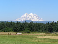 Mount Rainier (dherrera_96) Tags: trees mountain snow green landscape volcano scenic mountrainier evergreens glaciers pacificnorthwest wa washingtonstate cascaderange eatonvillewashington