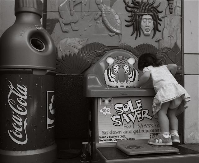 Encounter with a Tiger at the Atlanta Zoo