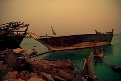 Boats/Trees!? (BALUCHI) Tags: trees sea boats bahrain nikon muharraq supershot d80