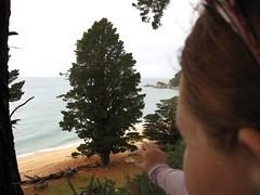 IMG_0225 (Maggie Paige) Tags: newzealand southisland abeltasmannationalpark coastaltrack