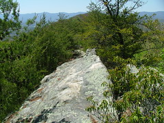 Cumberland Mountain Rock