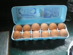 Oh Mr. Eggman... (horsepj) Tags: food chickens farmersmarket egg indiana eggs organic bloomington freerange egges eggscotton eggsiwanteggsiloveeggswhiteones brownones roundoneseggseggs cottoneggs