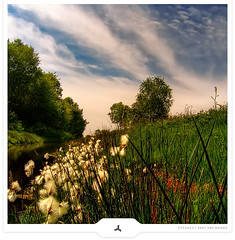 Rural Sunday (Gert van Duinen) Tags: trees sky nature grass germany landscape countryside bravo digitalart fields cheerful pastoral landschaft landschap emsland naturesfinest dutchartist anawesomeshot landschaftsaufnahme 200750plusfaves superbmasterpiece goldenphotographer blackribbonbeauty gertvanduinen