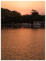 Today's Photo 070508 #04