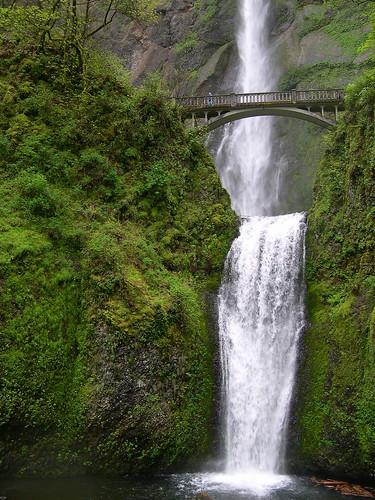 Bridgefalls