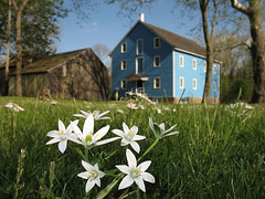 Flower Mill (magarell) Tags: flower mill dof nj monmouthcounty walnford upperfreehold