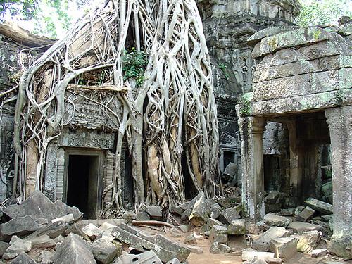 Templo Ta Prohm (Angkor Wat) en Siem Riep