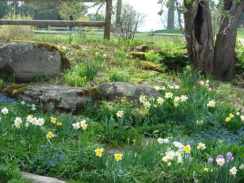 Von Trapp Lodge Gardens