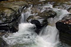 Watkins Glen Miniature (+David+) Tags: waterfall may fingerlakes watkinsglen smallfalls microfalls