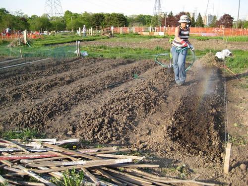all dug up