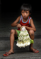 sampaguita boy (jobarracuda) Tags: boy flower lumix kid child bata pinoy childlabor fz50 sampaguitavendor superaplus aplusphoto jobarracuda