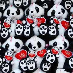 Scary teddy (Rune T) Tags: bear red white black cute square scary eyes panda different heart teddy many fair lottery iloveyou prize cuteness undercover imposter oddoneout