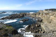 ©Point Lobos 2