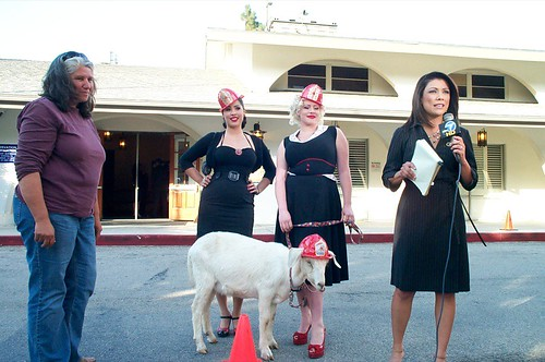 Frankie with Ashettes La Cholita and Paula Baby and Shepherdess Sarah with Channel 7 News' Elsa Ramon