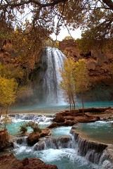 Havasu Falls - by rthrelkeld