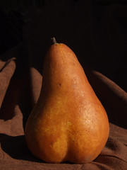 Pear 424 (Vanessa Pike-Russell) Tags: food macro fruit bestof nsw pear mostinteresting newsouthwales portfolio popular 2007 myfaves