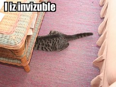 I iz Invizuble