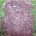 Reformation Grave 1666 Kirk O Shotts Scotland