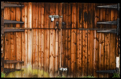 shed doors (dewaltbob) Tags: doors sheds isawyoufirst