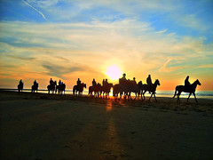 crusade (ie :: fotografie) Tags: sunset sky horses beach colors clouds awesome coolest abw westende photomatix supershot outstandingshots ilikethisphoto anyhdranyphotoshop anyhdranyps superaplus aplusphoto holidayvacanzeurlaub invitedphotosonlyahap
