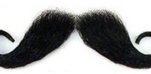 la moustache image