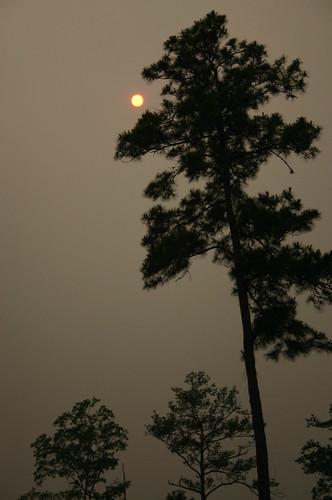 Red sun sky: Florida wildfires