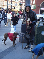 San Francisco Pack (bradleymaxwell) Tags: sf sanfrancisco dog homeless bum pack packleader