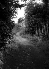 The end of the path along Redhill/Storeton (jimmedia) Tags: path end along the redhillstoreton