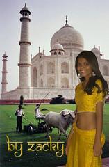 Angie Taj Mahal