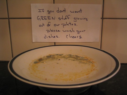 If you don't want GREEN stuff growing out of our plates, please wash your dishes. Cheers