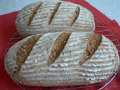 Whole-Wheat Multigrain 001