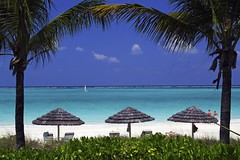 Breakfast at the Bay Bistro (WisDoc) Tags: beach canon bravo searchthebest caribbean turks caicos turksandcaicos baybistro providenciales magicdonkey wisdoc spselection gracebaybeach