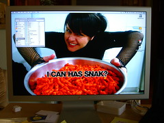 I CAN HAS FUCKING SNAK? (mobil'homme) Tags: colorado boulder snak skampy jasonswihart cuuuuuuuute