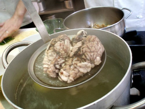 Blanchin' the Brains
