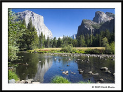 Yosemite Valley from North Side Drive (Herb Dunn (YosemiteJunkie)) Tags: california water canon waterfalls yosemite rivers elcapitan nationalparks beautifulscenery mercedriver mountainwater splendourofmountains canonphotography outstandingshots photobydunnrightphotography herbdunn dunnrightphotography kerncountyphotographers nationalparkphotography californiawaterfallslakesandstreams