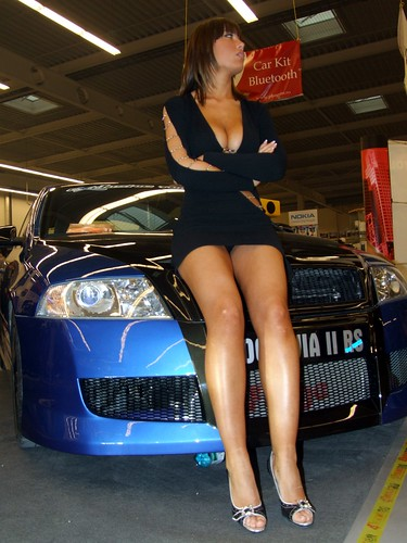 Great view on hot car show model