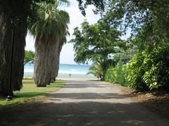 jamaica 045