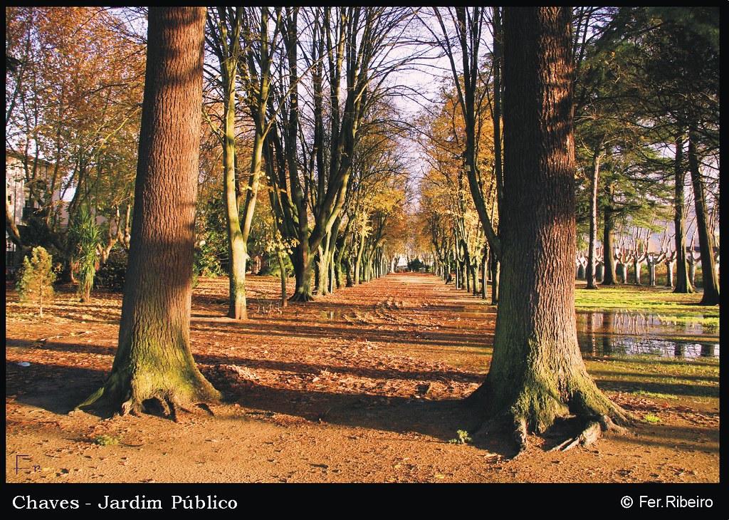Jardim Público - Inverno de 2006