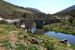Puente - by vcuevas