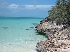 Buenavista shoreline