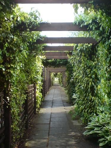 Viewpark Gardens