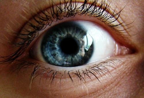 IMAGE: http://farm1.static.flickr.com/226/513850434_ef79c78b77.jpg