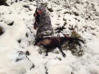 Spain Ibex Hunt & Driven Partridge Hunts 65