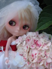 Suki! by peppercorn_pixie