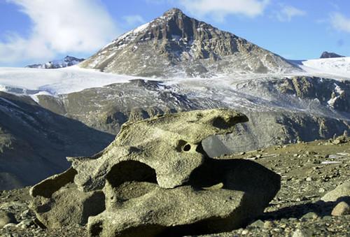 455537592 ae62599e9a Dry Valleys of Antarctica