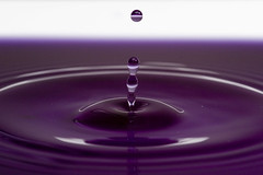 Deep Purple (Mr. Gee) Tags: 20d water canon drops bravo purple plate drop drip splash waterdrops foodcolouring sigma105mm flickrchallengewinner thatscreativity